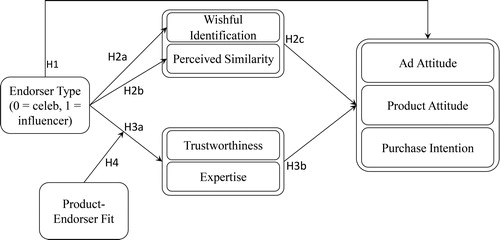 Endorsement type leads to wishful identification or trustworthiness. Both are associated with perceived similarity or expertise, respectively.  Both then lead to attitudes and intentions to purchasing a product.
